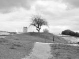 stevenantalics_landscapes_007